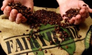 Fair-trade-coffee-002-300x180
